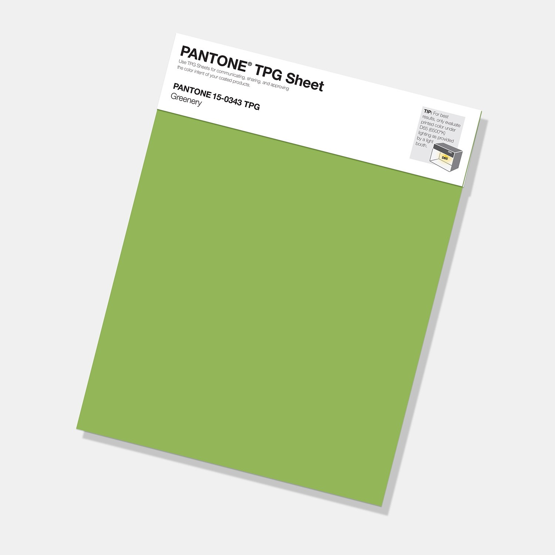 Pantone Large Paper Swatch (листы TPG и TPM)